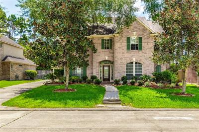 Houston Single Family Home For Sale: 2907 Silverberry Trail
