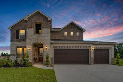 Houston Single Family Home For Sale: 13809 Northline Lake Drive