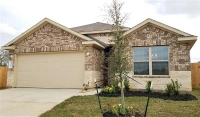 Conroe Single Family Home For Sale: 14000 Silver Falls Court