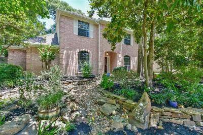 The Woodlands Single Family Home For Sale: 14 Cinnamon Teal Place