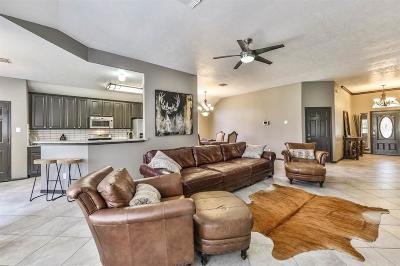 Missouri City Single Family Home For Sale: 3706 Hawkins Court