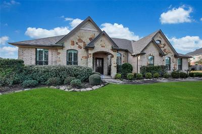 Tomball Single Family Home For Sale: 10411 Waterstone Estates Court