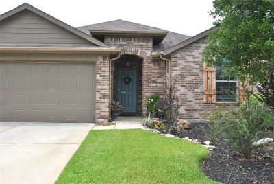 Magnolia Single Family Home For Sale: 7263 Basque Country Drive