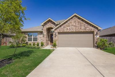 Fort Bend County Single Family Home For Sale: 2027 Plum Rose Lane