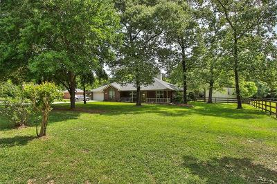 Magnolia Single Family Home For Sale: 24902 Wintergreen Drive