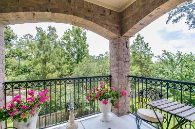 The Woodlands Condo/Townhouse For Sale: 6607 Lake Woodlands Drive #434