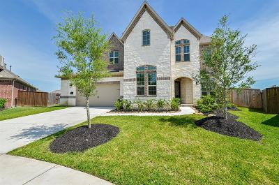 Katy Single Family Home For Sale: 25607 Peck Meadows Court