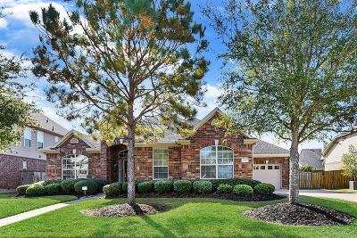 Katy Single Family Home For Sale: 27307 Wooded Canyon Drive
