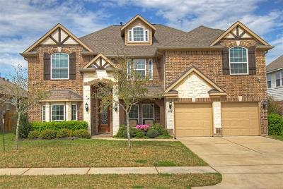 Spring Single Family Home For Sale: 5914 Brookway Willow Drive