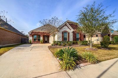 Sugar Land Single Family Home For Sale: 1615 Ralston Branch Way