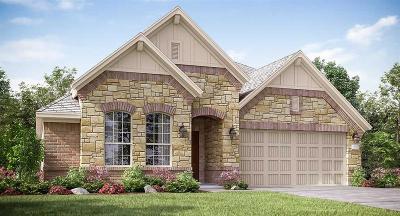 Rosharon Single Family Home For Sale: 4922 Spring Terrace Lane