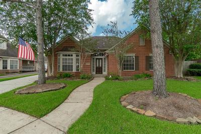Houston Single Family Home For Sale: 13502 Island Palm Court