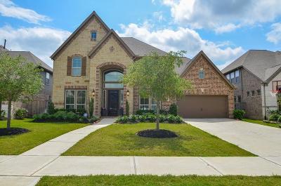 Katy Single Family Home For Sale: 2819 Juniper Pines Lane