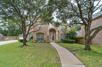 Houston Single Family Home For Sale: 10 Saint Thomas Court