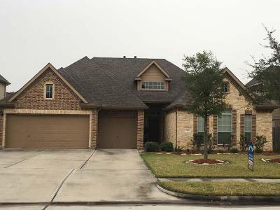 Deer Park Single Family Home For Sale: 2218 Lisa Lane