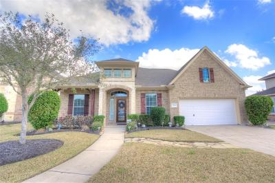 Pearland Single Family Home For Sale: 12901 Southern Ridge Drive