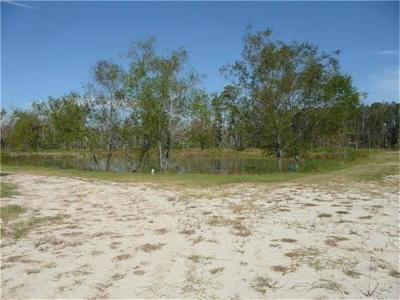 Conroe Residential Lots & Land For Sale: 9921 Sleepy Hollow Road