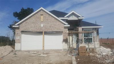 Single Family Home For Sale: 24722 Lake Basin Court