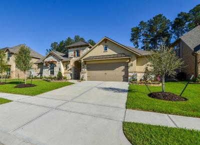 Tomball Single Family Home For Sale: 13410 Alpine Mountain Lane