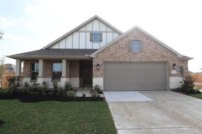 Tomball Single Family Home For Sale: 21742 Rose Maris Lane