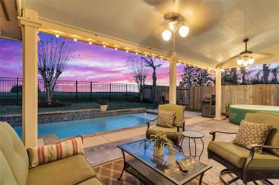 League City Single Family Home For Sale: 5743 Emerald Brook Lane