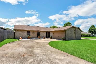 Deer Park Single Family Home For Sale: 402 N Crockett Street