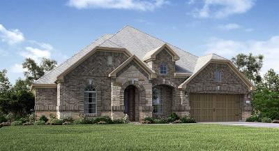 Tomball Single Family Home For Sale: 19147 Blue Hill Lane