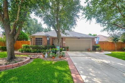 Katy Single Family Home For Sale: 3730 Bristleleaf Drive