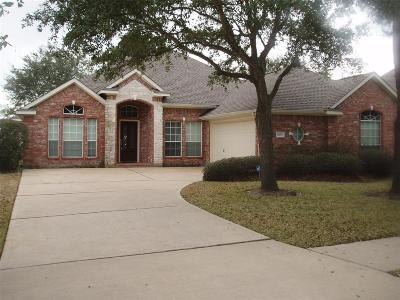 Houston Single Family Home For Sale: 11619 NW Ocotillo Drive NW