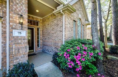 The Woodlands Single Family Home For Sale: 75 Robindale Circle