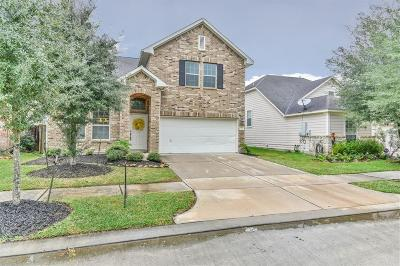 Houston Single Family Home For Sale: 15835 Scenic Water Drive