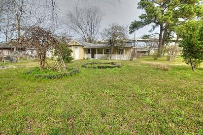 Houston Single Family Home For Sale: 14724 Kenny Street