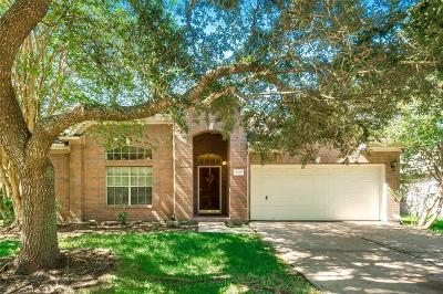 League City Single Family Home For Sale: 1245 Willow Branch Drive