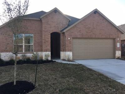 Spring Single Family Home For Sale: 4811 Creekside Haven Trail