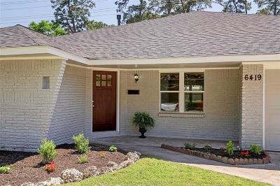 Houston Single Family Home For Sale: 6419 Cindy Lane