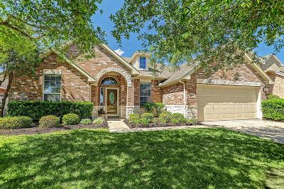 League City Single Family Home For Sale: 2710 Chinaberry Park Lane