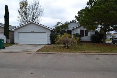 Tomball Single Family Home For Sale: 10202 Berrypatch Lane