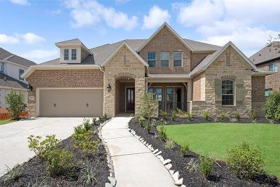 Sienna Plantation Single Family Home For Sale: 2011 Big Creek