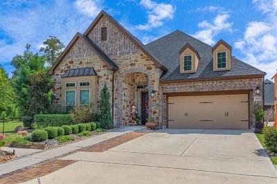 Conroe Single Family Home For Sale: 9907 Beautyberry