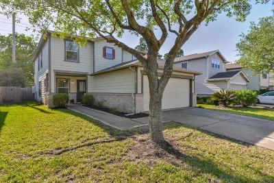 Tomball Single Family Home For Sale: 19611 Rippling Brook Lane