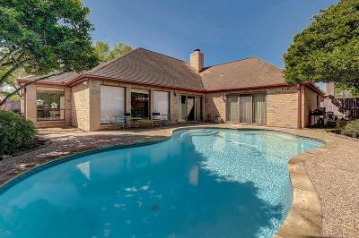 Houston Single Family Home For Sale: 12110 Meadow Lake Drive