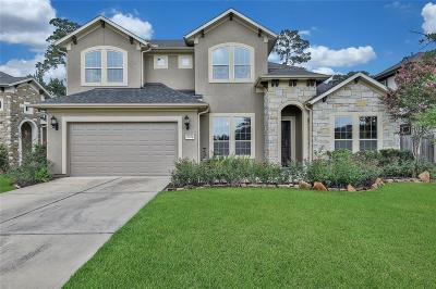 Single Family Home For Sale: 28978 Twisted Oak Drive