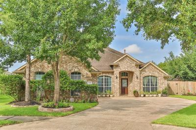 Single Family Home For Sale: 17035 Feather Fall Lane