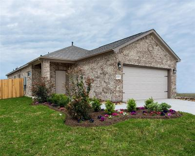 Humble Single Family Home For Sale: 21803 Red Arbor Drive