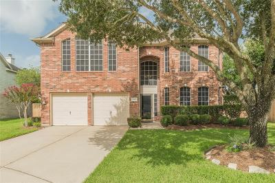 Pearland Single Family Home For Sale: 2402 Sun Spot Lane