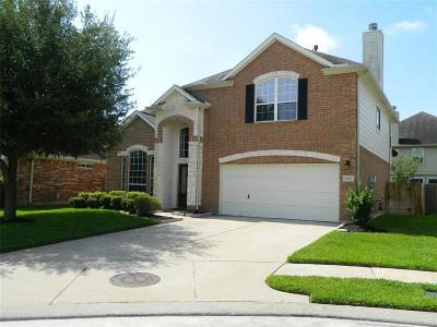 Harris County Single Family Home For Sale: 16947 Summer Crossing Lane