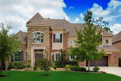 The Woodlands Single Family Home For Sale: 14 Player Vista