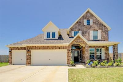 Baytown Single Family Home For Sale: 230 San Marcos Drive