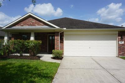 Dickinson Single Family Home For Sale: 226 W Seascape Lane W