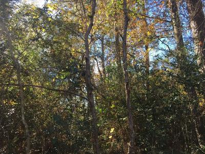 Conroe Residential Lots & Land For Sale: Artic Circle